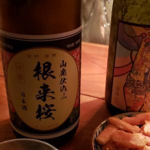 6月4日のオンライン日本酒BARあさくら