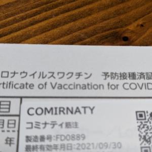 トマトとビーフでvsワクチン