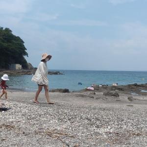 海トレーニング