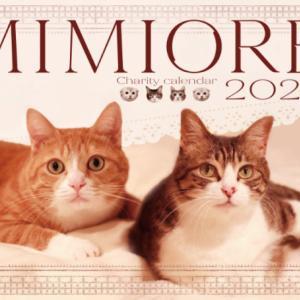 ミミオレ。カレンダー2022の予約について。
