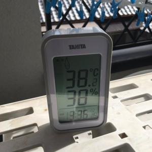 38.2度