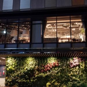 カウンターでおしゃれに和食炉端焼きなら八喜多賀博多駅前店