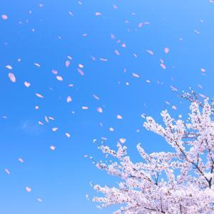 ♡春分♡宇宙新年♡ブログお引越しのお知らせ~。*゚○.+♪