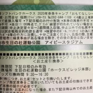 宮崎キャンプ楽しみだ〜\(^O^)/