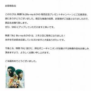新規当選 DVD「糸」/ポニーキャニオン