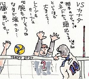 バレーボールTV観戦