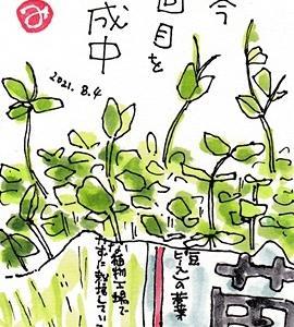 茨城県緊急事態宣言