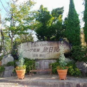 ハーブ庭園(*^^*)
