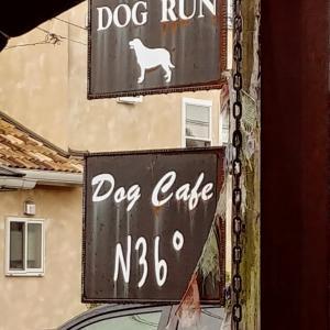 高穂N36°ドッグカフェ