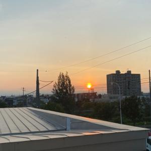 朝日が綺麗