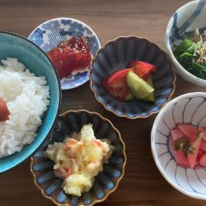庭の野菜でお昼ご飯