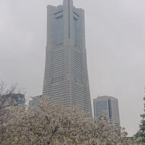 4/12 横浜赤レンガで台湾祭!