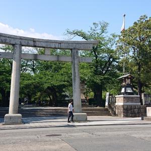 三島楽寿園のブサかわアルパカ