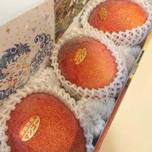 【ふるさと納税】糸満市 濃厚アップルマンゴー