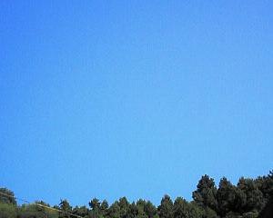 今日も暑いぞ熊谷。辛いぞやきとり、東松山。