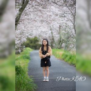 桜が咲く季節はまたやってくる。