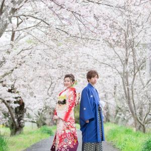 満開の桜の中の成人記念写真 幼馴染Vr.