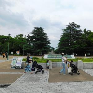 梅雨の晴れ間 ・水無月の鶴舞公園