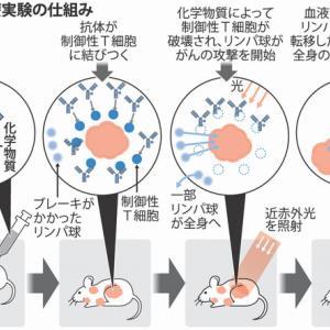 ついに!光で癌細胞だけを攻撃し照射は数分で人体には無害の光免疫療法が世界に先駆け国内で始まる