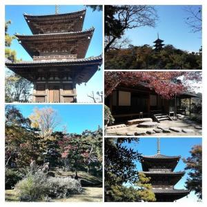2011/11 GOTO 第4弾 2日目