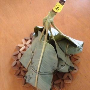 朴の木(ホウノキ)の葉の・・朴葉巻を//と