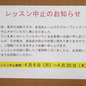 ⛔️【WINS】サークル休止のお知らせ