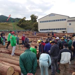 奈良の銘木市場
