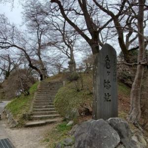 亀ヶ城公園の桜 @福島県棚倉町