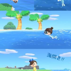 姫×海開き。