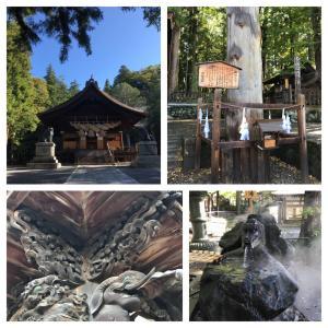 諏訪湖と入笠山 ①