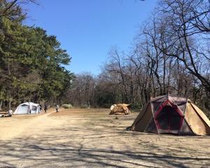 キャンプなう〜