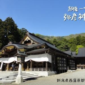 平成最後の参拝は弥彦神社!