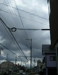 台風は去りましたがまた雨が降りそうです
