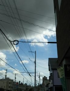 曇っていますがこれくらいが良いです