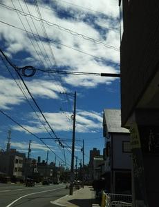 台風は逸れましたが明日は雨の予報です