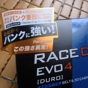 Panasonic Race D Evo4 [Duro] ブラウンにしてみる