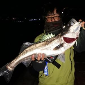 中川シーバスまったりガッ釣り2019年 その7