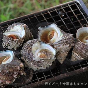 海岸ぺりで飽食の魚介バンザイキャンプ
