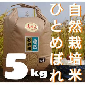 無農薬米を親戚に送付