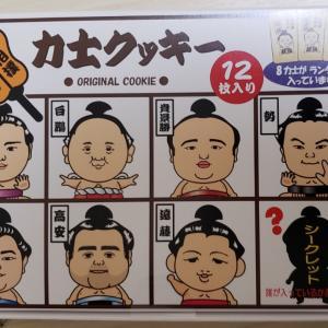 大相撲九州場所グッズ