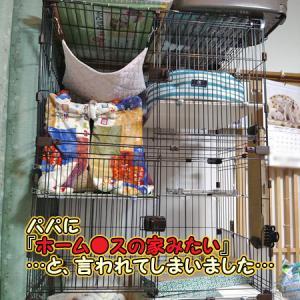 チコの9回目の命日~猫用こたつ(画像いっぱい)