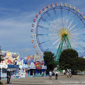 茨城へ①。ひたち海浜公園。