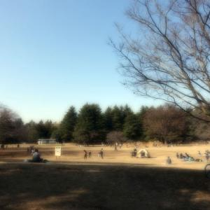 週末公園。