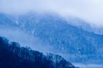 冬の山風景(岐阜県飛騨市神岡町東漆山)