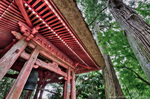 幡かけの杉と鐘堂【HDRi】(神奈川県伊勢原市日向)