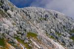 初冬の横手山(長野県下高井郡山ノ内町)