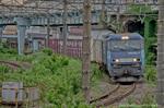 EH200-17コンテナ列車【HDRi】(神奈川県川崎市幸区新川崎)