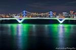 豊洲大橋とレインボーブリッジ夜景(東京都江東区豊洲)