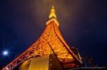 曇り空の東京タワー夜景(東京都港区芝公園)