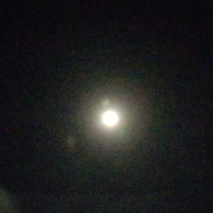 9月21日の中秋の名月 (8年ぶりだとか)今ごろかい!?  名月や 膳に這ひよる 子があらば